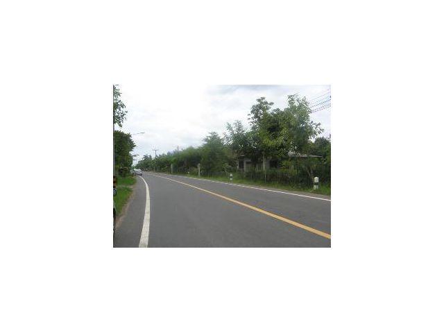 ขายที่ดินในสุรินทร์ติดถนนบ้านท่าสว่าง ทำเลค้าขาย เปิดมินิมาร์ท อยู่ในแหล่งชุมชน(id319)ติดต่อ 0831000104 ต่าย