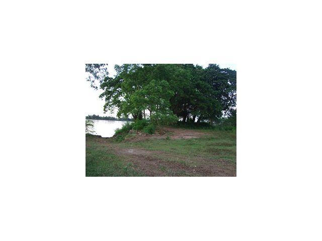 ขายที่ดินมีโฉนด ติดแม่น้ำโขง วิวสวย 4 ไร่ 1 งาน 45 ตร.วา. 4.5 ล้านบาท