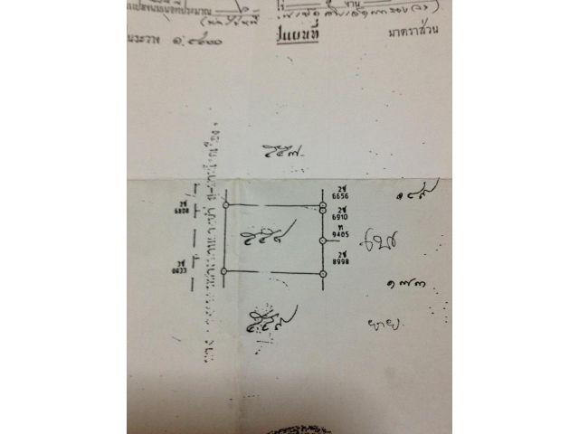 ขายที่ดิน 6ไร่ อ.สตึก จ.บุรีรัมย์