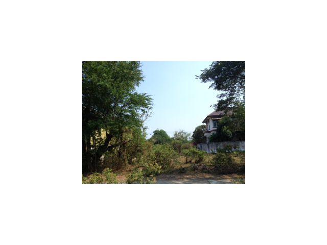 ขายด่วน ที่ดินหมู่บ้านพฤษชาติ ใกล้บริเวณสโมสรกษิกรไทย พื้นที่ 108 ตารางวา
