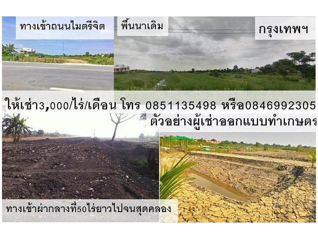 ที่ดินในกรุงเทพแบ่งให้เช่า 30ไร่ ราคา3,000บาท/เดือน/ไร่ เขตมีนบุรี-คลองสามวากรุงเทพ โทร 0851135498/0846992305 lineid:085