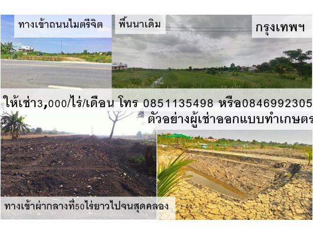 ที่ดินให้เช่า ที่ดินในกรุงเทพแบ่งให้เช่า 30ไร่ ราคา3,000บาท/เดือน/ไร่ มีนบุรีกรุงเทพ โทร0851135498 หรือ 0846992305