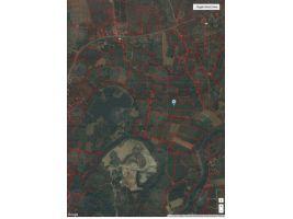 ขายที่ดินมีโฉนด ต.ท่าไม้รวก อ.ท่ายาง จ.เพชรบุรี เนื้อที่ 9ไร่ 88 ตารางวา ติดต่อ 0806571915 (เจ้าของขายเอง)