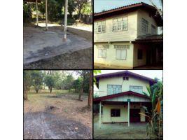ขายบ้านพร้อมที่ดิน 22 ไร่ 54 ตารางวา ต.บ้านเล่า อ.เมือง จ.ชัยภูมิ