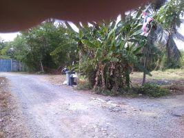 ขายที่ดิน 210 ตร.วา ซอยเพชรหึงษ์ 22