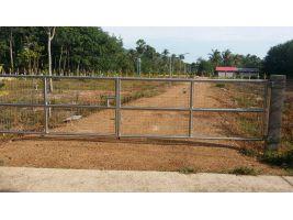ขายที่ดินพร้อมบ้านสวนไร่ละ 1.6 ล ใกล้ โรงเรียนหาดใหญ่พิทยาคม