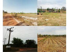 ขายที่ดิน แปลงใหญ่ 95ไร่ อ.ทรายมูล ยโสธร มีไฟฟ้า น้ำประปาครบ ราคาถูกๆ