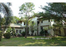 ขาย บ้านเดี่ยวริมน้ำป่าสัก สระบุรี ขนาด  1ไร่ 60ตร.ว. บ้านสวยมาก สนใจโทร 094-624-4678 วิ