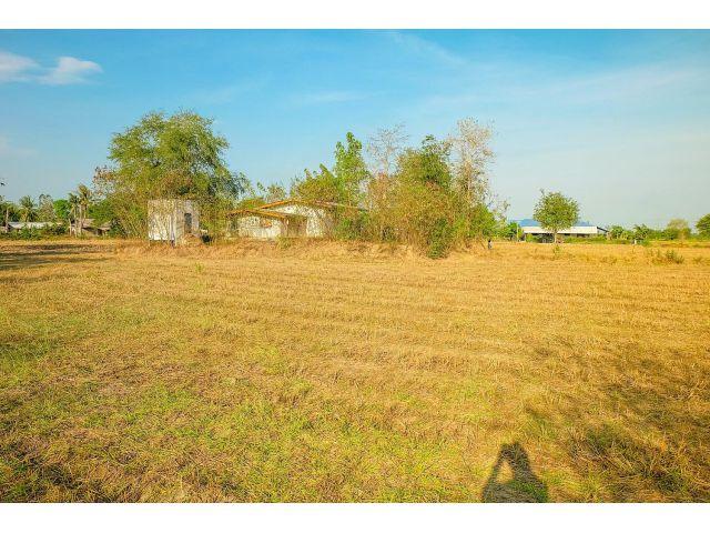 ขายด่วนที่ดิน 10 ไร่ ที่ดินสวยมากพร้อมบ้าน อยู่ในแหล่งชุมชน