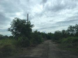 ขายที่ดิน 200 ตรว ต.เชียงพิณ เมืองอุดรธานี