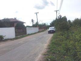 ขายด่วน ที่ดิน  4 ไ ร่ 3 งาน  ติดถนน