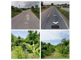 ขายที่ดิน 8-1-20 ไร่ๆละ 220,000 โฉนดพร้อมโอน ติดถนนสาธารณะ ไฟฟ้า ประปา