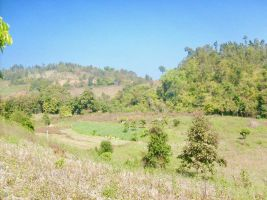 Land for sale closed to Pai (Mea Hong Song)