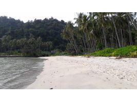 ขายที่ดินติดทะเลราคาถูก เกาะกูด จ.ตราด พื้นที่ 13 ไร่ ด้านหน้าติดทะเล ด้านหลังติดถนน