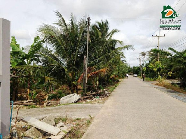 ขายที่ดิน สวนผลไม้ 9ไร่ 200ตรว. ซอยนาคบำรุง สวนหลวง กระทุ่มแบน สมุทรสาคร (LA0107)