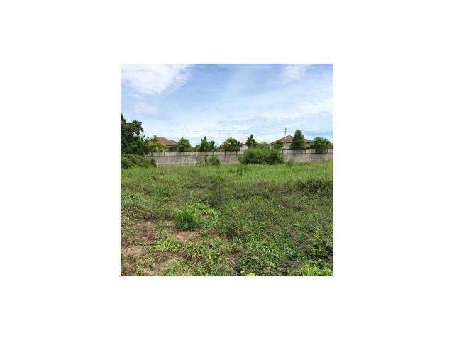 ••••• ขายที่ดินพุทธมณฑลสาย 2 ตรว. ละ 33,000 บาท / Land for sale! Phutthamonthon Sai 2 •••••
