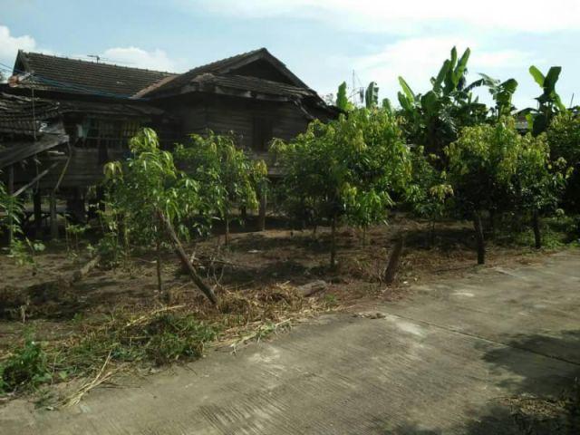 บ้านสวนผสม โซนวังผาง น้ำดิบลำพูน  สวนผสมมีลำไย มะม่วง กล้วย มะนาว ส้มโอ ฯลฯ  มีบ้านไม้1หลัง กลางสวน เนื้อที่ 181ตาราง