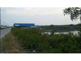 ขายที่ดินซอยประชาอุทิศ 90 ขนาด 44 ไร่ พื้นที่สีเหลือง เหมาะสร้างโครงการ หมู่บ้านจัดสรร