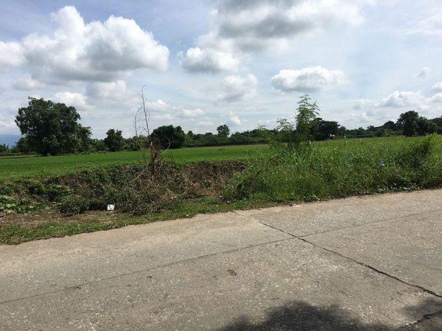 ขายที่ดิน 32 ไร่ไร่ละ1.8ล้านก่าง ถนน 108 เชียงใหม่-หางดงประมาณ400 เมตร