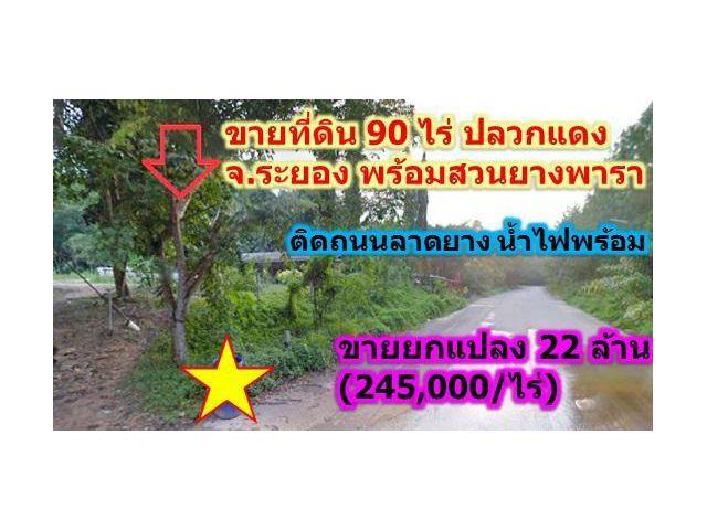 ขายที่ดินพร้อมสวนยางพารากรีดแล้ว 90ไร่ ติดถนนลาดยาง ระยอง