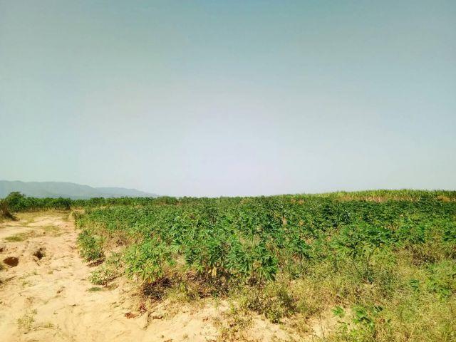 ต้องการหาคนเช่าที่ดินแปลง1600ไร่ภบท5ราคาไร่ละ850ต่อปี