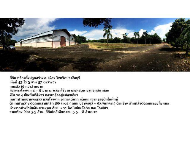 ขายถูกมาก .. ที่ดินสวยพร้อมสิ่งปลูกสร้าง อ.เมือง ปราจีนบุรี
