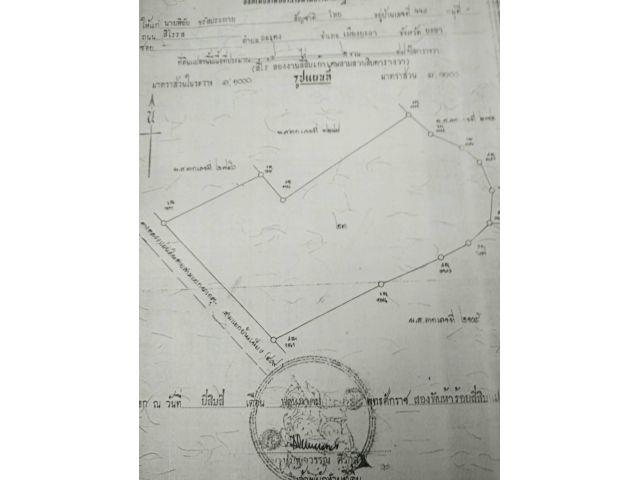 ขาย โรงงานแปรรูปไม้ยางพารา ติดถนนสาย 409 (ลำใหม่-นาประดู่)