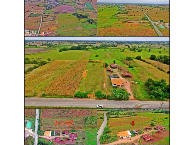 ขายที่ดิน2ไร่1งาน67ตารางวา เหมาะแก่ทำ การเกษตรแบบพอเพียง