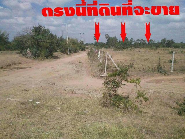 ที่ดินอยู่ห่างถนนลาดยาง 120 เมตร ที่สูงไม่ต้องถม สภาพแวดล้อมดีมีเพื่อนบ้าน