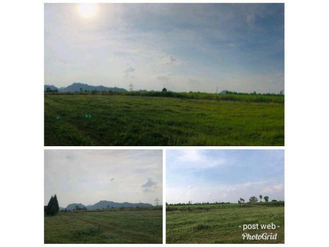 ขายที่ดิน 2แปลง ที่สวย เหมาะปลูกบ้านหรือทำการเกษตร  อ.เมือง จ.ราชบุรี