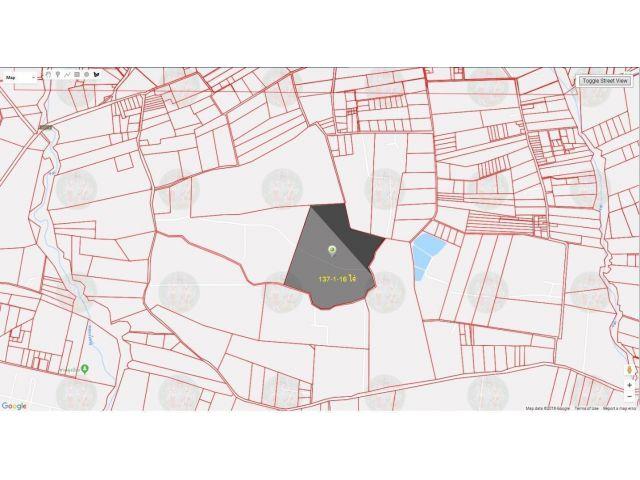 ที่ดินเปล่า 137-1-16 ไร่ หนองอิรุณ บ้านบึง ชลบุรี ราคาไร่ละ 8 แสน บาท ราคารวม 110 ล้านบาท