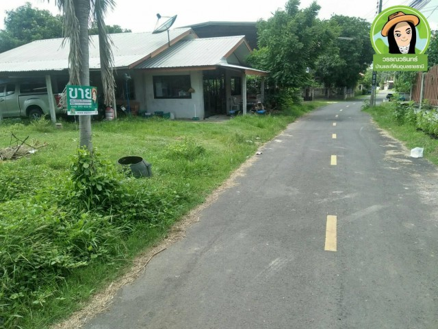 ที่ดินสวยติดถนนลาดยาง ซอยข้างโรงเรียนปากห้วยวังนอง