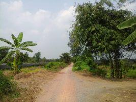 Signature land  คลองสาม  ที่ดิน ราคาไร่ละ 1100000